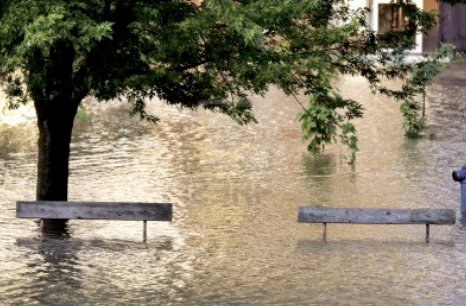 Business Flood Claims